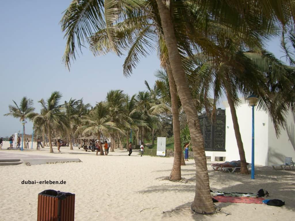 Dubai beaching