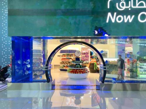 Dubai Mall Underwater Zoo Exit